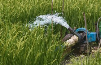 Haryana's groundwater crisis heads for point of no return